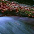 日の峰川 碧い流れ