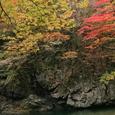 中津谷渓谷の紅葉5