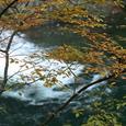 中津谷渓谷の紅葉4