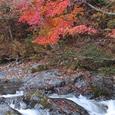 中津谷渓谷の紅葉3