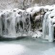 九重 暮雨の滝 凍る